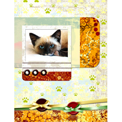 "Scrapbook template ""Cats Day #07"" in ""Pets"""
