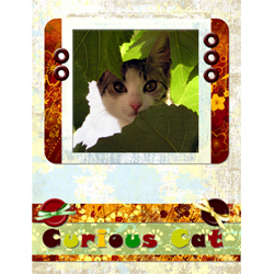 "Scrapbook template ""Cats Day #15"" in ""Pets"""