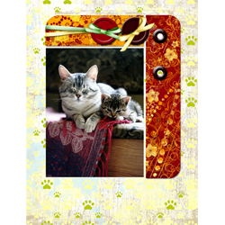 "Scrapbook template ""Cats Day #13"" in ""Pets"""