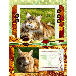 "Scrapbook template ""Cats Day #05"" in ""Pets"""