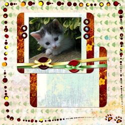 "Scrapbook template ""Cats Day #08"" in ""Pets"""