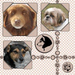 "Scrapbook template ""Dogs #02"" in ""Pets"""