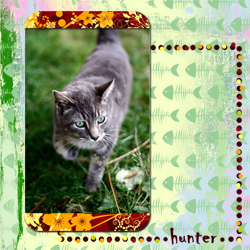 "Scrapbook template ""Cats Day #10"" in ""Pets"""