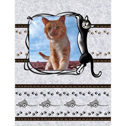 "Scrapbook template ""Cats #02"" in ""Pets"""