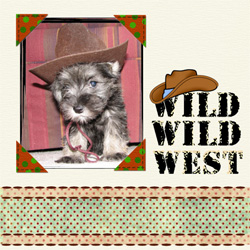 "Scrapbook template ""Wild West #16"" in ""Travel"""