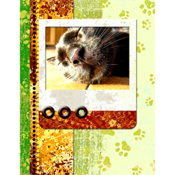"Scrapbook template ""Cats Day #01"" in ""Pets"""