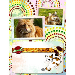 "Scrapbook template ""Cats Day #17"" in ""Pets"""