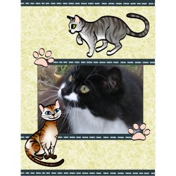 "Scrapbook template ""Cats #04"" in ""Pets"""