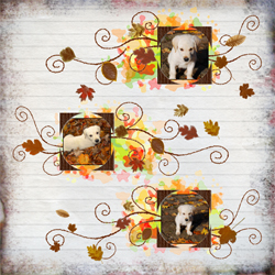 "Scrapbook template ""Fall #10"" in ""Fall"""