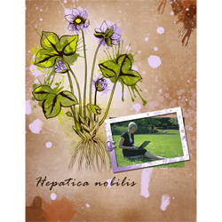 "Scrapbook template ""Spring flowers #05"" in ""Spring"""