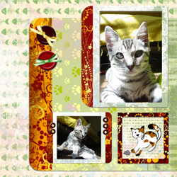 "Scrapbook template ""Cats Day #20"" in ""Pets"""