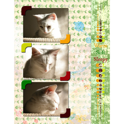 "Scrapbook template ""Cats Day #09"" in ""Pets"""